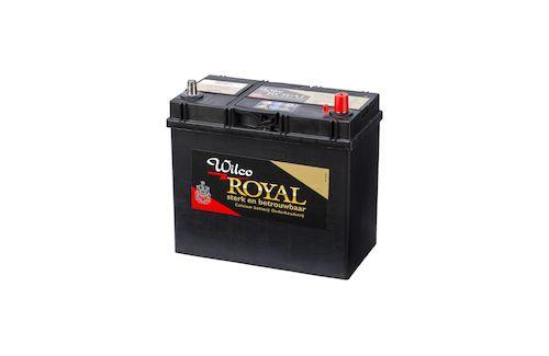 Wilco Royal accu 45 Ah – W54584
