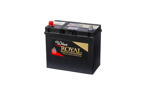Wilco Royal accu 45 Ah – W54524